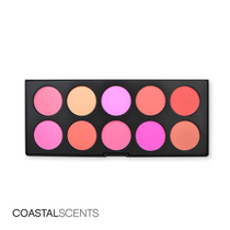 Coastal Scents 10 Blush Palette